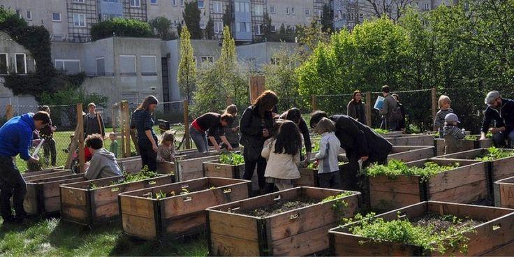 ET HAVEFÆLLESSKAB I BERLIN / A Berlin Garden-community