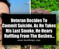 Veteran Decides To Commit Suicide. As He Takes His Last Smoke, He Hears Ruffling From The Bushes...
