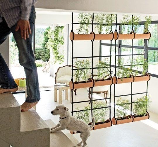 cloison chambre de plantes suspendues