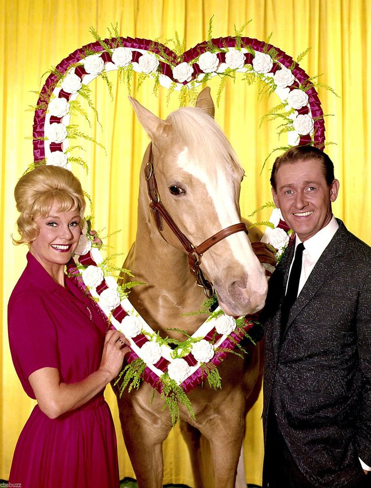 Mister Ed TV Show Photo X1 | eBay