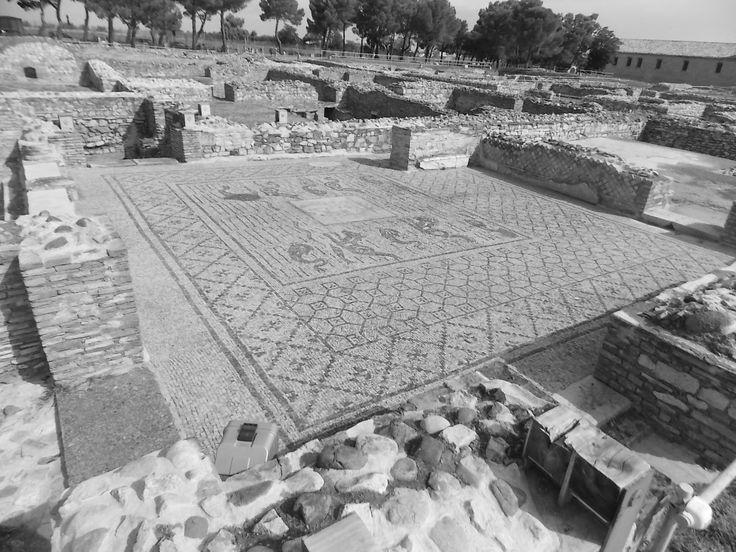 #venosa Thermal Baths , archeological area #ilovevenosa #lacittadiorazio #orazio #roman #basilicata #matera2019 #visitmatera #matera #trinitadivenosa GiuliaManes guided tours