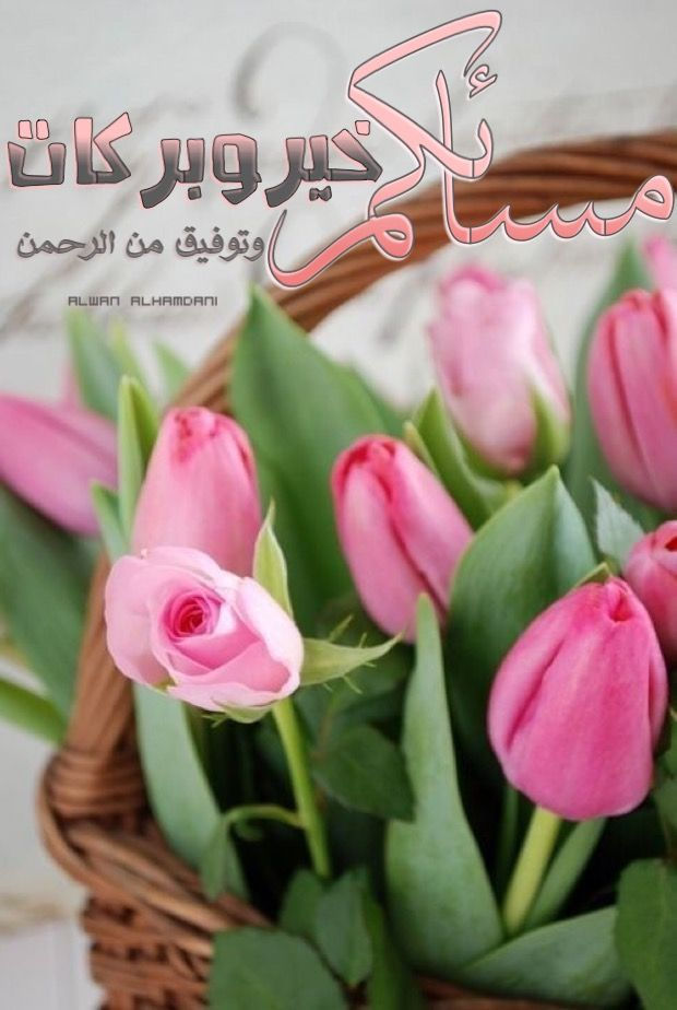 Pin By Alwan Alhamdani On مساء الخير Evening Greetings Good Morning Gif Good Morning Images