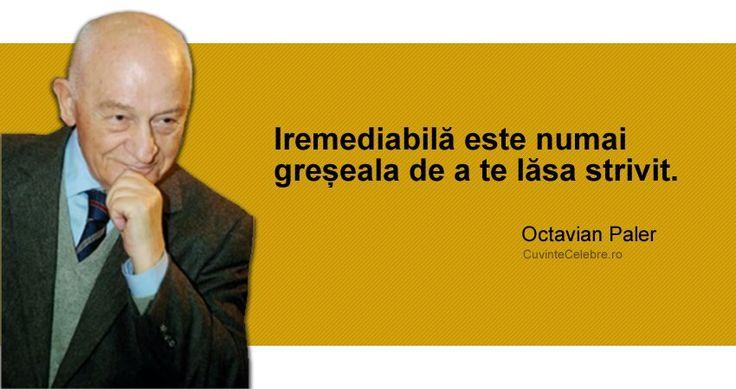 """GREȘEALA IREPARABILĂ: """"Iremediabilă este numai greșeala de a te lăsa strivit."""" Octavian Paler"""