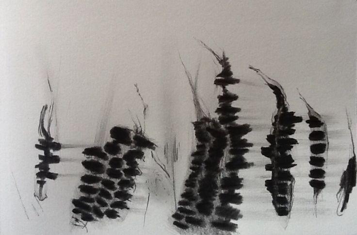 Jacqueline Aust drawing