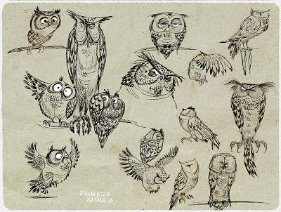 Owls doodles, illustration, drawing / Gufi schizzi, illustrazione, disegno - by Francesca Natale