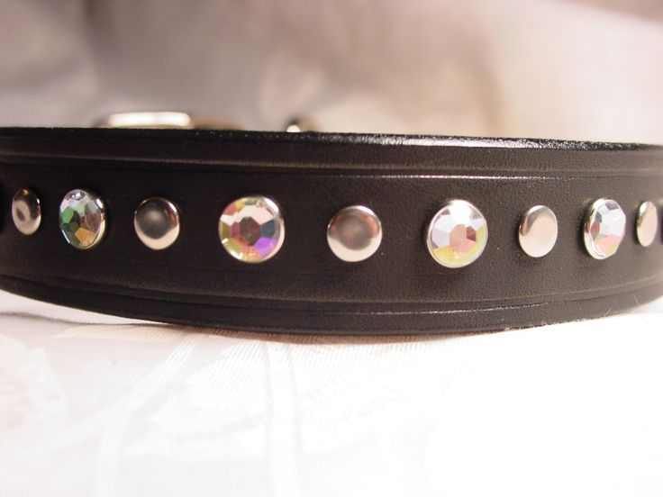 Black Leather Decorated Dog Collar by Frisado on Etsy