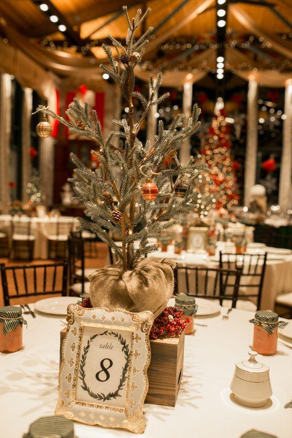Poinsettia Reception Table Centerpiece At A Christmas Wedding In Diy Christmas Wedding Centerpieces Christmas Wedding Centerpieces Winter Wedding Centerpieces