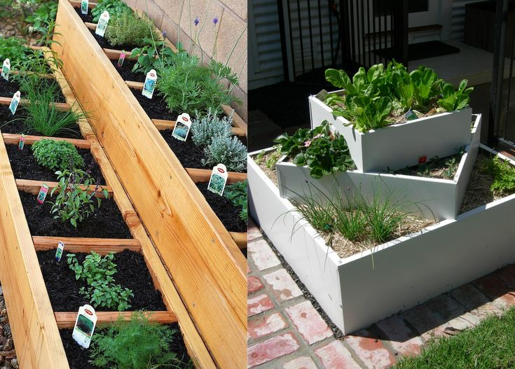 Backyard Herb Garden Ideas Raised Bed Herb Garden Want The Boxes Are A  Little Small For