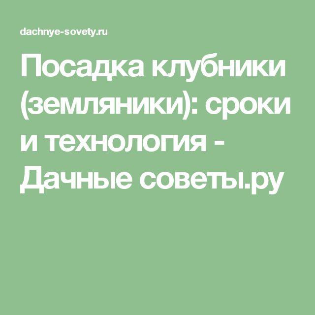Посадка клубники (земляники): сроки и технология - Дачные советы.ру