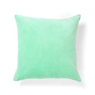 Mint velvet cushion