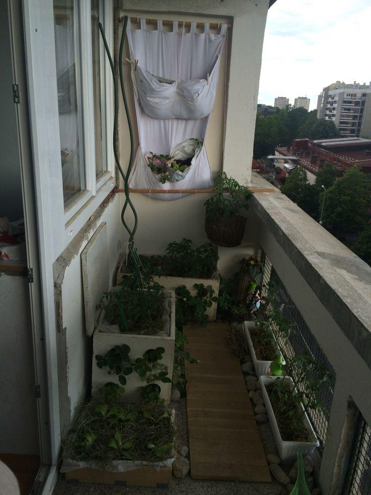Garden is spreading