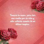 Imágenes de rosas con frases románticas 5