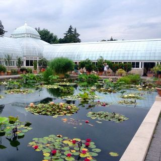 These peaceful places will help you escape the hustle and bustle of the city without actually leaving: New York Botanical Garden. See more here.