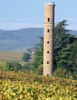 Beaujolais Blanc, region's fairest. Whites from the Beaujolais appellation, or Beaujolais blancs, can carry hints of white peach and apricots, while those from Beaujolais Villages, or Beaujolais Villages blancs, often have aromas of pear, fresh almond and tropical fruit.