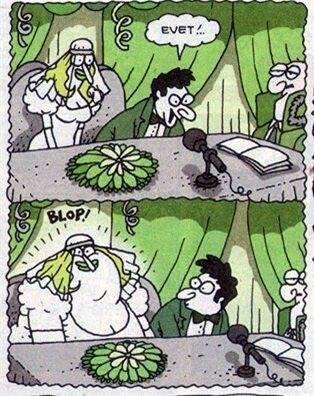 Karikatür: Hemen evet demicen abi ;-)