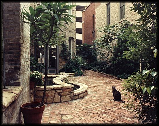 35 best images about courtyard design ideas on pinterest for Courtyard landscaping