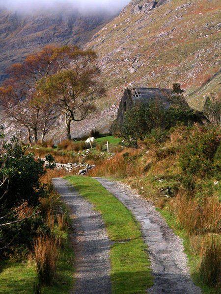 ~Black valley, Kerry, Ireland