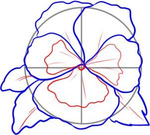 How to Draw a Pansy, Step by Step, Flowers, Pop Culture, FREE Online Drawing Tutorial, Added by Dawn, September 13, 2010, 9:36:57 pm