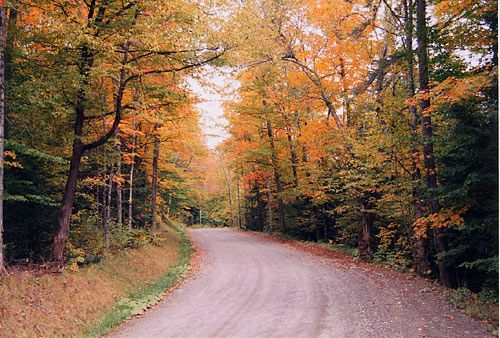 Vermont Fall Foliage Drives,