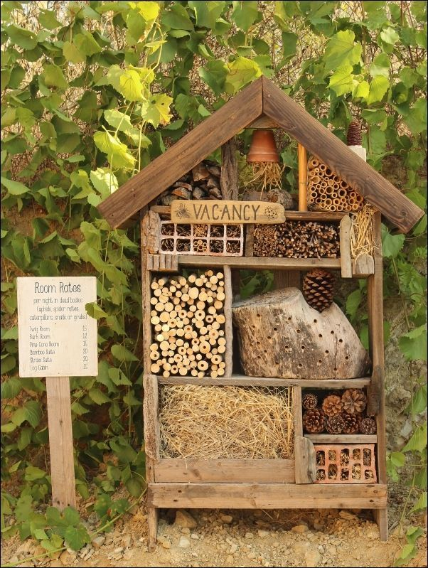 When I came across an insect hotel on Pinterest about two years ago, I was intrigued immediately. I hadn't seen or heard of one before. I learned that insect hotels are predominantly made from natural