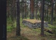 Stenminnen : de småländska stenmurarna - ett kulturarv (inbunden)