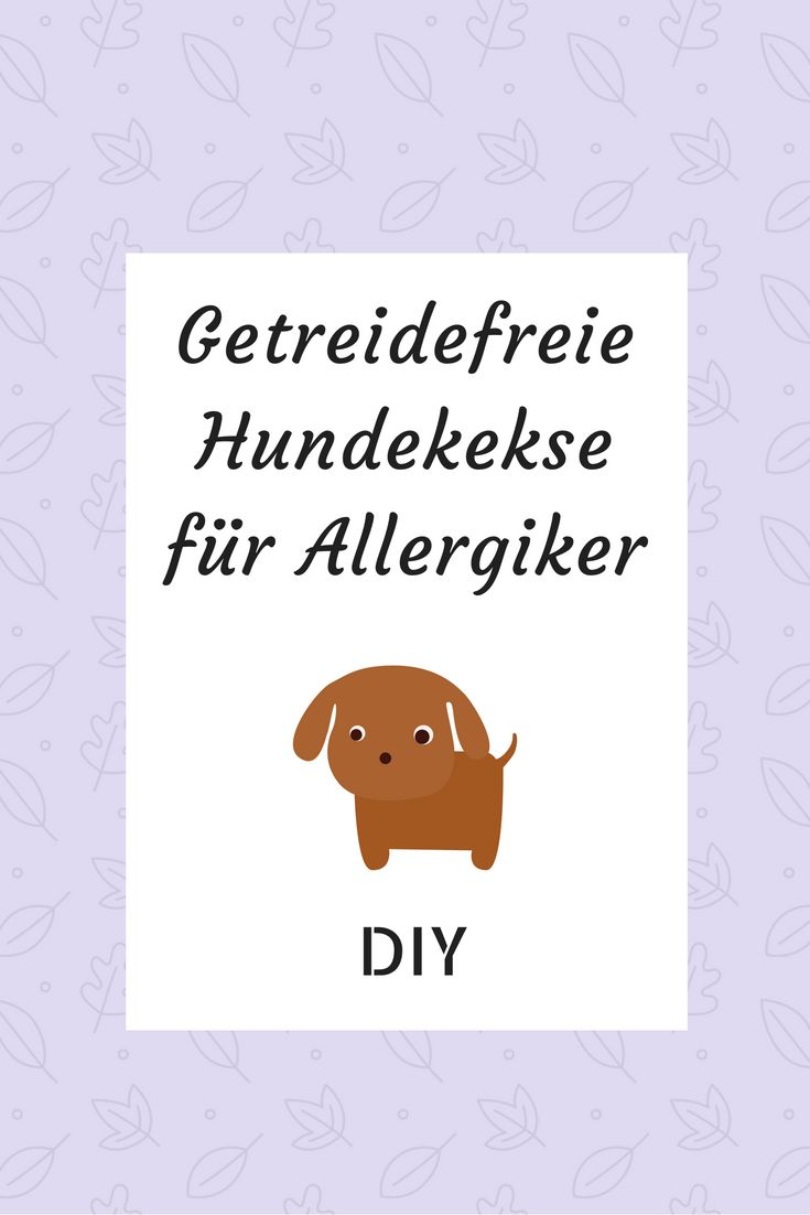 Getreidefreie Hundekekse für Allergiker zum Selbermachen.