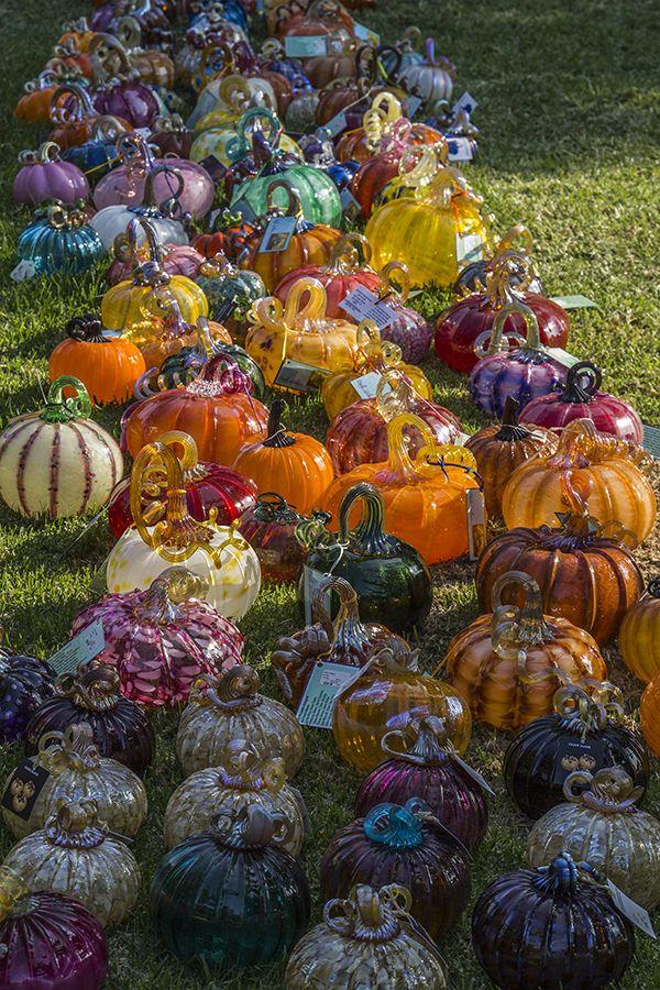 "From Jubilada: ""Glass Pumpkins in Palo Alto, September, 2012."""
