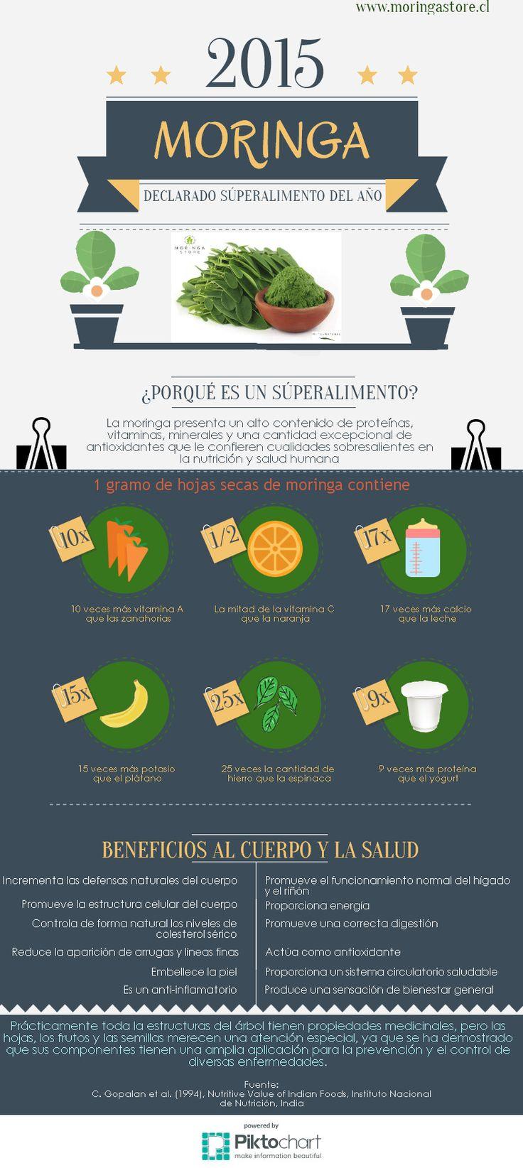 ¿Porqué la moringa es el #súperalimento del 2015? #moringa #superfood                                                                                                                                                                                 Más