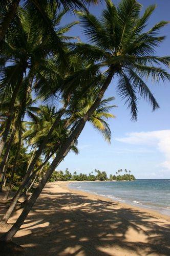Puerto Rico Pictures: Puerto Rico Beach
