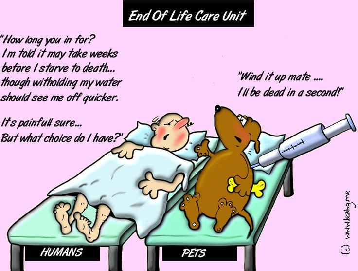 a comparison of the issues of active and passive euthanasia The global euthanasia debate by health care professionals has raised important ethical issues  passive and active euthanasia  a comparison between.