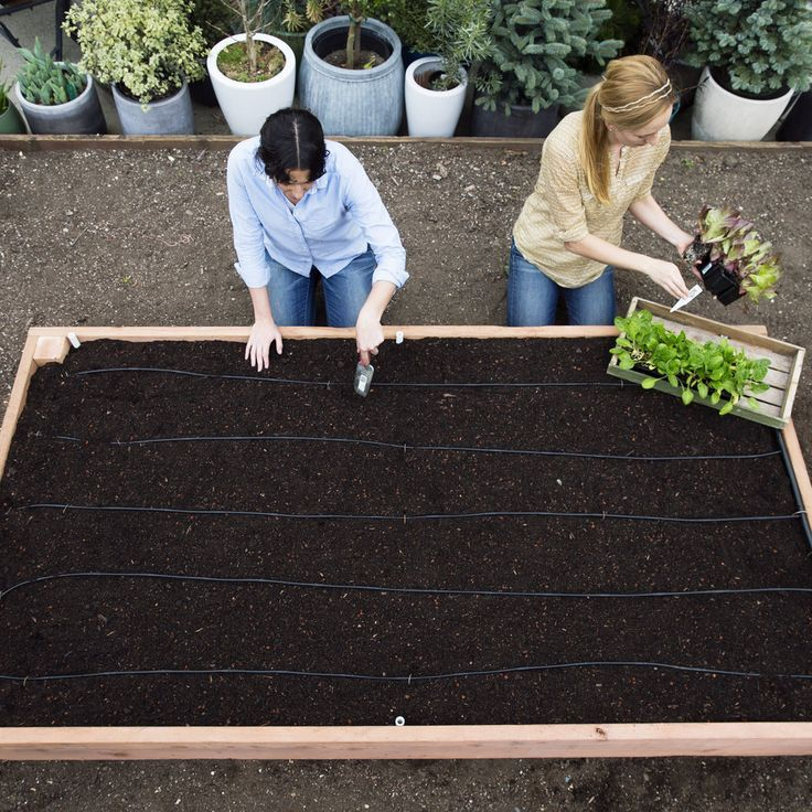 Use these DIY instructions to make your own planting box for veggies