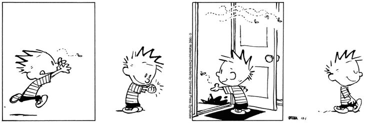 Calvin and Hobbes - who let the flies out... and in?