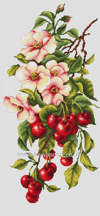Shop online for Still Life Cherries Cross Stitch Kit at sewandso.co.uk. Browse our great range of cross stitch and needlecraft products, in stock, with great prices and fast delivery.