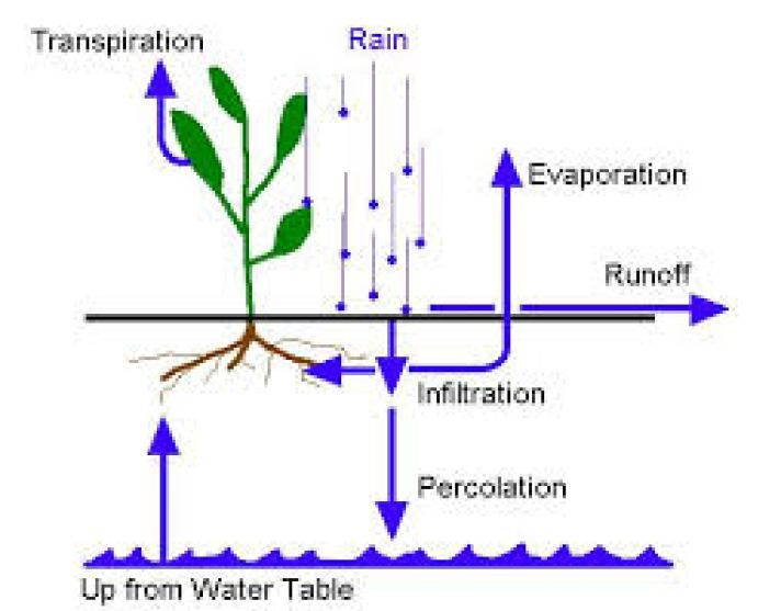 Infiltration And Percolation Infiltration Aquaponics Evaporation