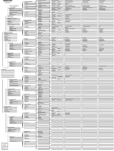 *Genealogy Forms   Fixed form pedigree chart.
