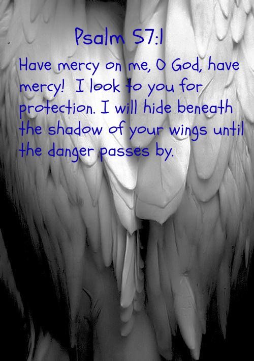 Psalm 57:1 Have mercy on me, O God, have mercy!     I look to you for protection. I will hide beneath the shadow of your wings     until the danger passes by.