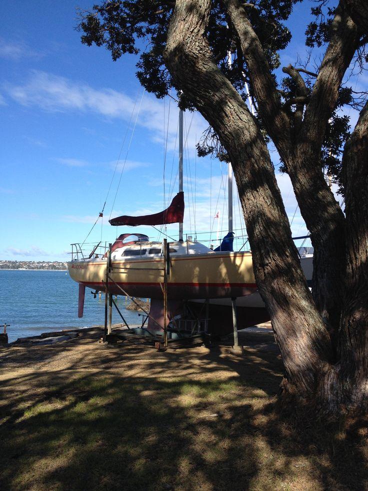 Devonport Sailing Club Auckland www.wooree.co.nz
