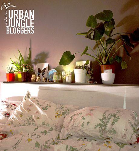 #urbanjunglebloggers November   bold.color.glass blog