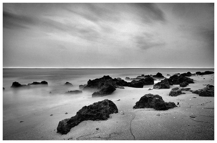 landscpae black and white photo