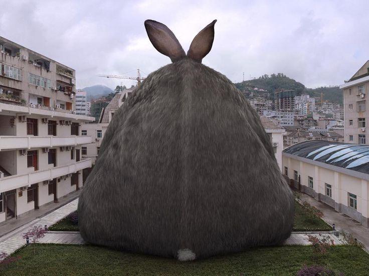 HORAIRES DE PÂQUES  Vendredi 14 - Samedi 15 - Dimanche 16 et Lundi 17 avril : Le musée est ouvert de 11h à 18h.  EASTER OPENING HOURS Friday 14 - Saturday 15 - Sunday 16 and Monday 17 April: The Museum is open from 11am to 18pm. [Image : Liu Di 柳迪 Animal regulation n7 2008  Liu Di 柳迪 Musée de l'Elysée ]  #easter #Pâques #museum #photography #rabbit #lapin #horaire #lausanne #switzerland #elyseemusee