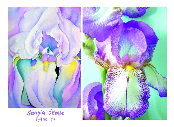 Georgia O'Keefe flower