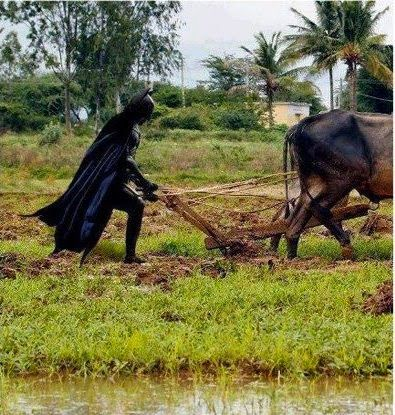 Foto Lucu superhero  Batman Sedang Bajak Sawah