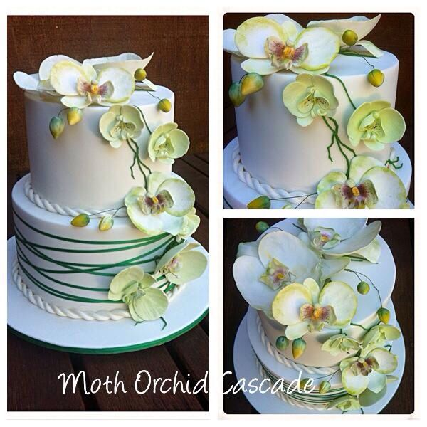 Hand made sugar orchids with cross cross ribbon effect on extra tall tiers..