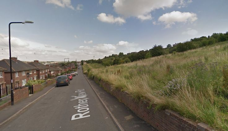 Rotherham teen raped in woods in broad daylight - The Sun