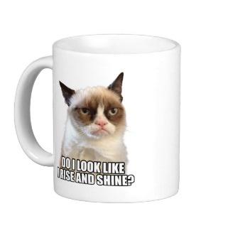 Do I look like I rise and shine? Tard the Grumpy Cat and more fun mugs.