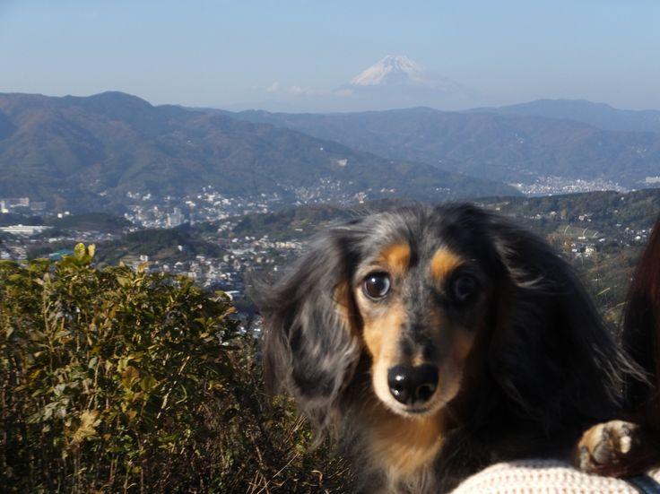 小室山にて/小室山山頂で富士山をバックに記念撮影。 小室山は富士山、、伊豆の山々に海、どの方向を見ても、とても景色が良いです。1回目はリフトに乗りましたが、2回目はリフトに乗らず、頑張って登りました。