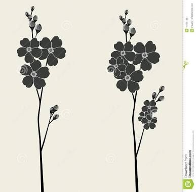 forget me not botanical illustration - Google Search