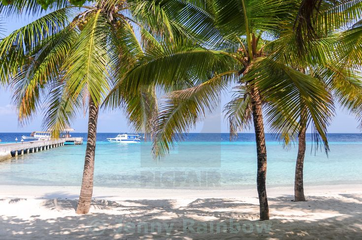 """Tropical beach with palms in Maldives"" by Jenny Rainbow - £10"