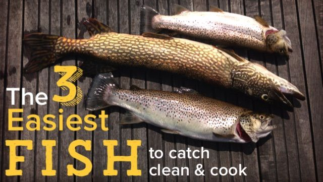 7 best row your boat images on pinterest adventure for Catch and cook fish