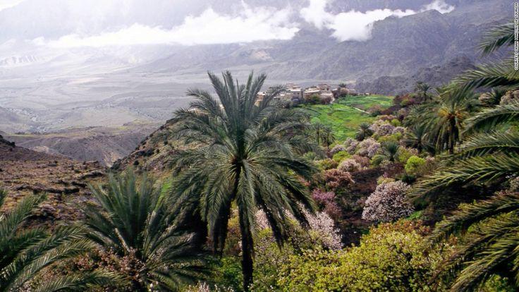 SALALAH, OMÃ: O OÁSIS VERDEJANTE DA PENÍNSULA ARÁBICA